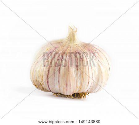 Unwashed Pink Garlic