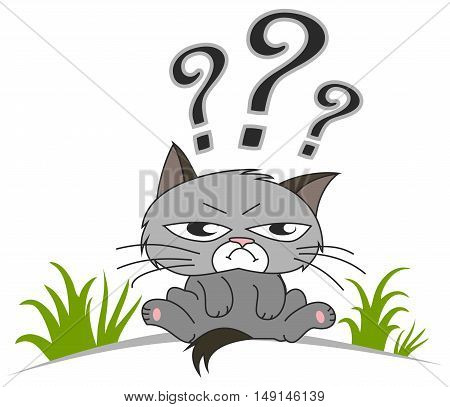 Thinking cat with questions mark above on white background