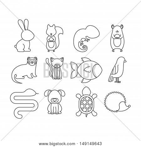 Set of animals. pet cartoon and nature theme. Isolated design. Vector illustration