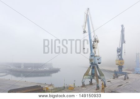 Port cranes in an industrial port in a misty morning.