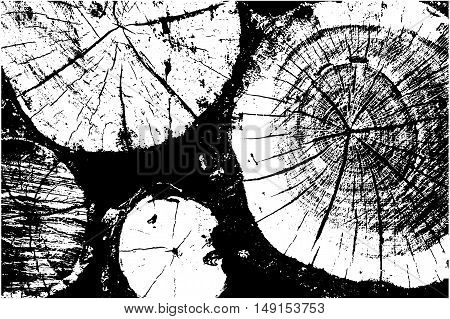 Distressed halftone grunge vector texture - wood trunk isolated on white background. Tree rings - black and white. Vector illustration EPS 8