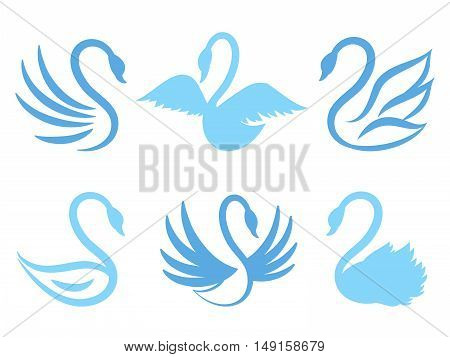 Swan icons or birds icon for natural care or eco life. Set of swan and illustration animal swans with wing