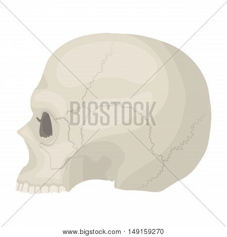 Skull icon in cartoon style isolated on white background. Black and white magic symbol vector illustration.