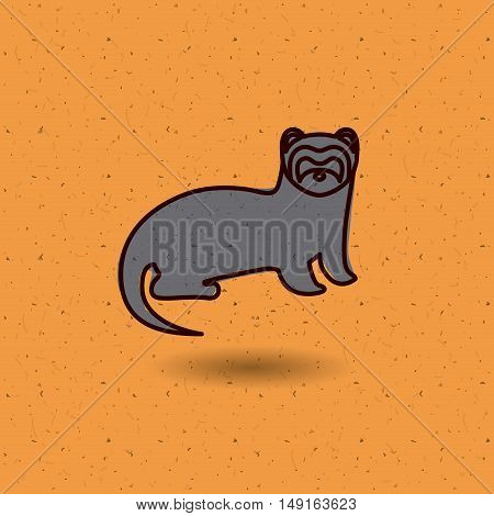 Ferret icon. Animal pet cartoon and nature theme. Colorful design. Vector illustration