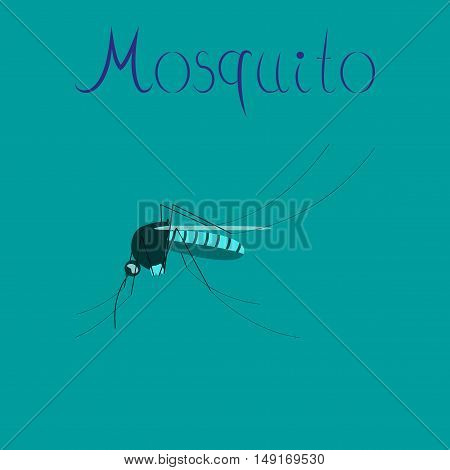 flat icon on stylish background insect mosquito