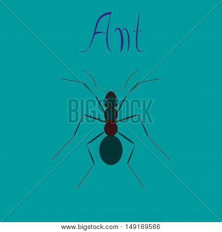 flat icon on stylish background cartoon ant