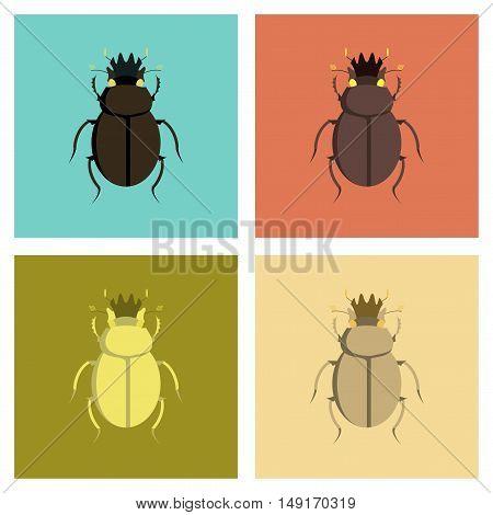 assembly of flat Illustrations egypt bug scarab