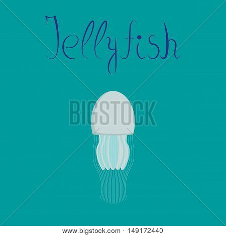 flat illustration on stylish background biology jellyfish