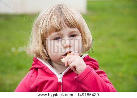 little blonde cute child sitting eating bread piece and looking at camera with green grass background