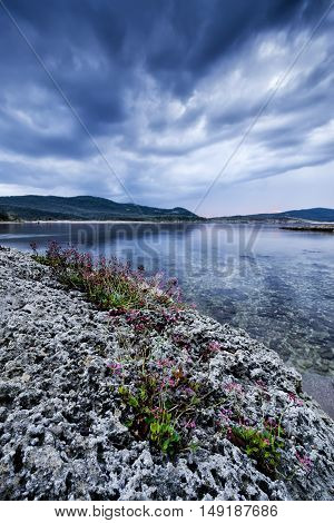 Clouds rocks and flowers in Burgas bay