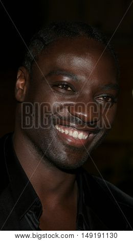 Adewale Akinnuoye-Agbaje at the Los Angeles premiere of 'Get Rich or Die Tryin' held at the Grauman's Chinese Theatre in Hollywood, USA on November 3, 2005.