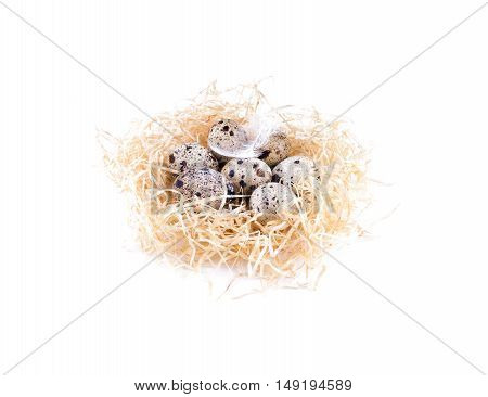 Nest With Quail Eggs Side View. Straw, Quail Eggs, Isolated.