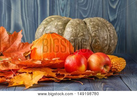 Hanksgiving - Different Pumpkins In Rattan Basket In Front Of Old Weathered Wooden Boards