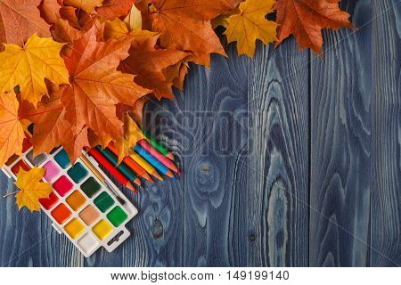 Autumn Leaves On A Background Of Black School Board