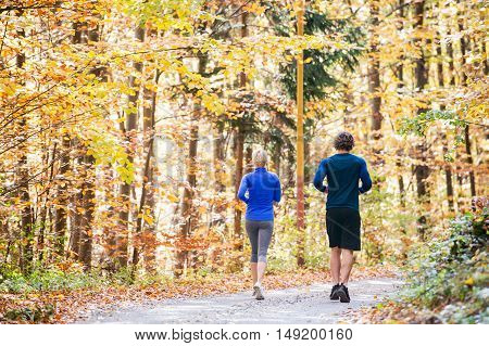 Beautiful couple running together outside in sunny autumn forest, rear view