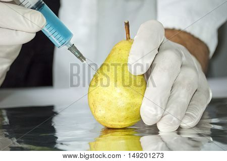 Yellow pear in genetic engineering laboratory gmo food concept