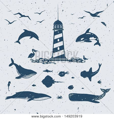 set of different marine creatures: whales, dolphins, fish shark