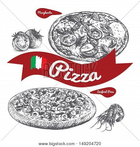 Margherita and Seafood pizzas illustration. Vector illustration of pizzas