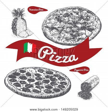Hawaiian and Pepperoni pizzas illustration. Vector illustration of pizzas