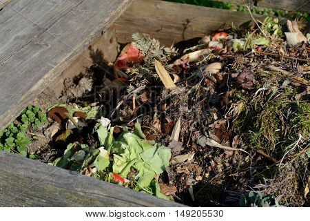 Views in open wooden compost bin with garden and kitchen waste