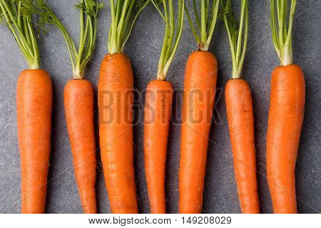 Fresh carrots bunch on a grey stone background Top view. Copy space