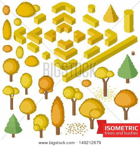 Isometric autumn trees, hedge and bushes set. City, park and outdoor plants. Vector illustration