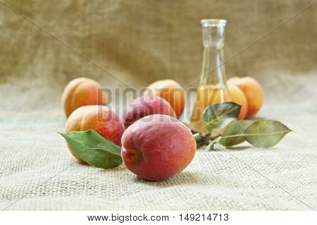 Fresh and tasty apricot fruit and apricot brandy on a table cloth. Selective focus with shallow depth of field.