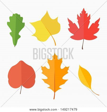 Set of autumn leaves isolated on white background. Flat style vector illustration.