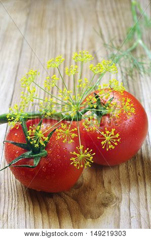 Tomato and dill with water drops on wooden background