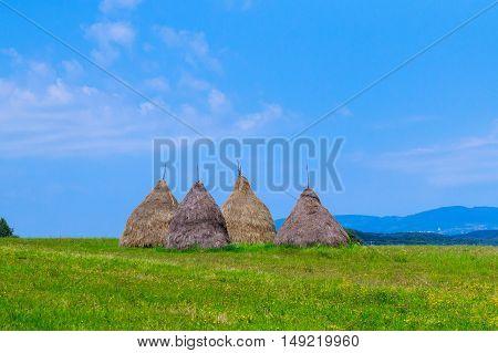 Haystacks in the Field Under the Stormy Sky haystacks field sky grass