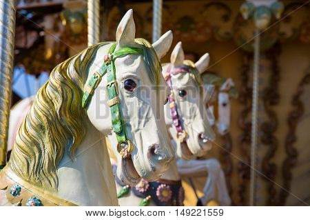 Close up of horses heads on a merry go round.