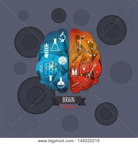 flat design abstract human brain with science related icons image vector illustration