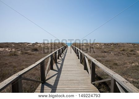 Wooden Path To Ocean Horizontal