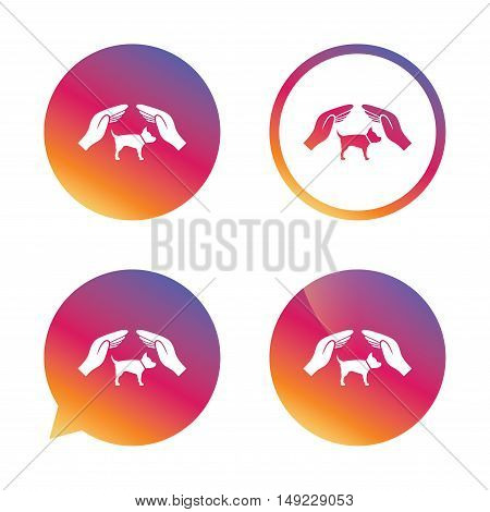 Protection of animals pets sign icon. Hands protect dog symbol. Shelter for dogs. Animals insurance. Gradient buttons with flat icon. Speech bubble sign. Vector