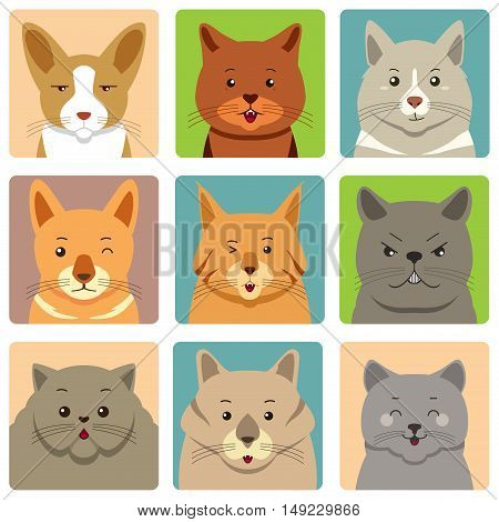 A vector illustration of Different Cats Avatars and Expression