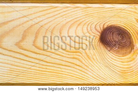 wooden background with a pattern of fibers and cut the knot