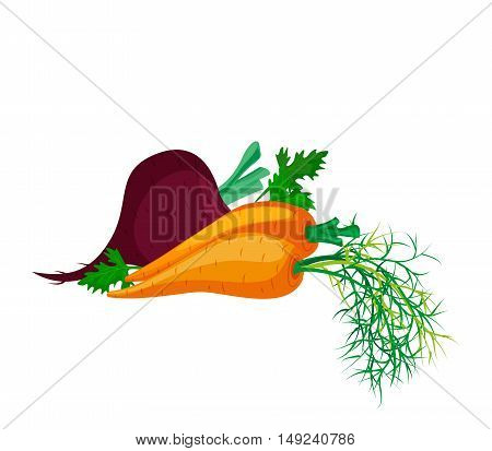 Fresh vegetables on white background: beets carrots and parsley