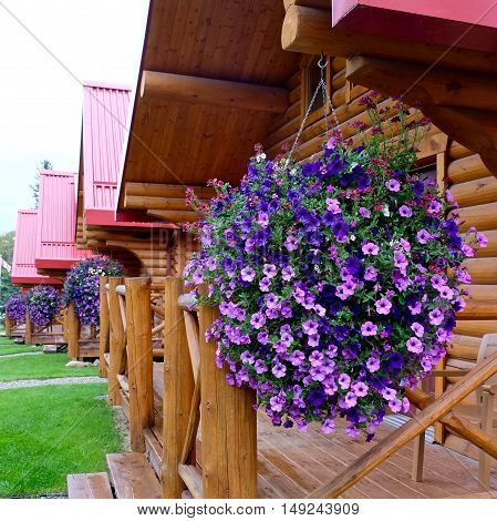 Roche Miette Vacation Cabins, Alberta/Canada - September 2, 2016: Wooden vacation rental cabins Pocahontas in Jasper National Park, Canadian Rockies.