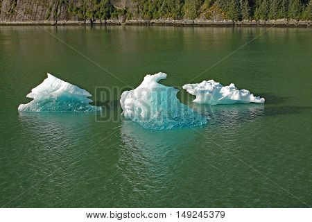 ice calved from Alaska's glaciers glistening blue in the sun