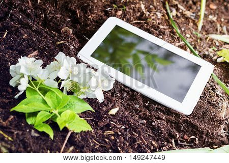 White Business Tablet On Soil Next To Some Flowers