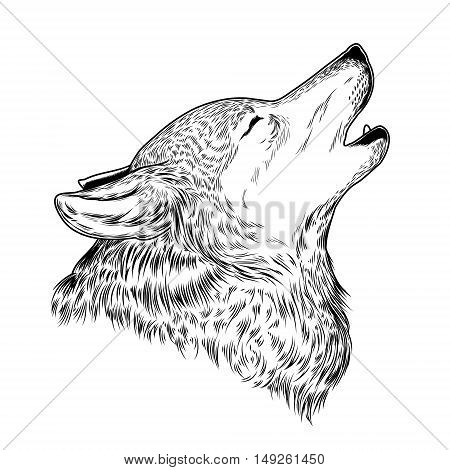 Vector illustration of a howling wolf, engraving. Print for T-shirts.