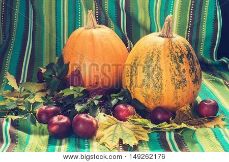 Autumn still life. Pumpkins and apple among the fall leaf on the background of green cotton fabric.