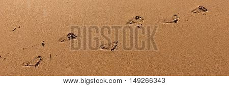 Footprints from the child on brown sandy beach
