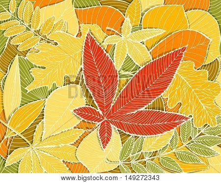 Autumn Illustration With Colorful Fallen Leaves