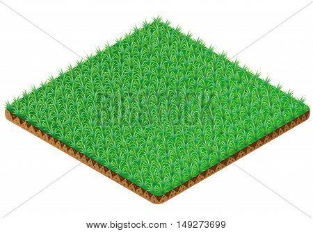 Green Grass tile. Isometric view. Vector illustration.
