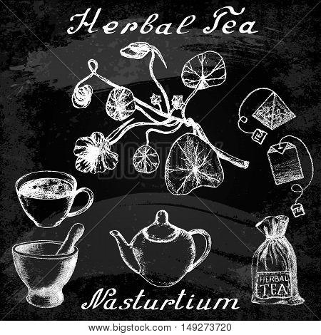 Nasturtium hand drawn sketch botanical illustration. Utensils for tea. Vector illustation. Medical herbs. Effect of chalk board. Grunge background