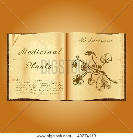 Nasturtium. Botanical illustration. Medical plants. Old open book herbalist. Grunge background. Vector illustration
