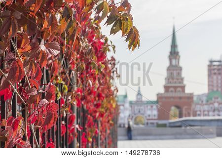 background cityscape view of the bridge tower in the city of Yoshkar-Ola in autumn