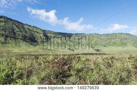 April 5 2016 Savana, Bromo Tengger East Java National Park.