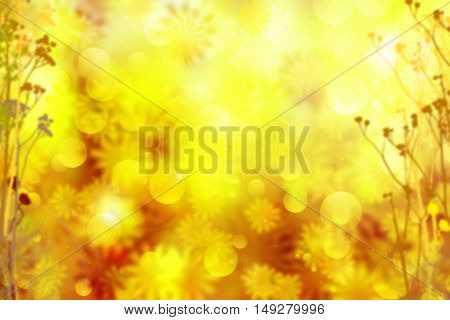 Autumn flowers sunny background. Abstract fall bokeh with lens flare effect. Beautiful fall forest with field flowers flying in the air. Blurred yellow and orange fall background with golden stardust.